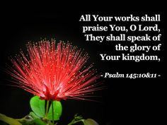 All thy works shall praise thee, O Lord...Psalm 145:10-11
