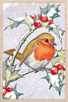 A sweet Christmas Robin Wooden Postcard from The Wooden Postcard Company. The illustration is printed onto FSC wood which is thin enough to post. Christmas Bird, Christmas Scenes, Christmas Animals, Christmas Images, Christmas Crafts, Christmas Pictures To Draw, Christmas Outfits, Christmas Costumes, Outdoor Christmas Decorations