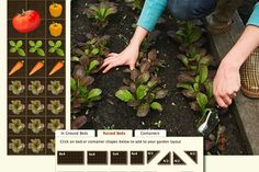 A customized garden planner based on where you live & how many people you have in your family.