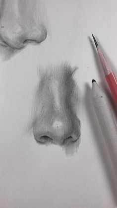 Practicing drawing parts of the face. As the nose is the most difficult part of the face to draw (in my opinion) so I'm gonna practice it more than anything else. Different noses, different angles, the more, the better! drawing videos How I draw the nose. Nose Drawing, Drawing Faces, Painting & Drawing, Faces To Draw, Back Drawing, Pencil Art Drawings, Realistic Drawings, Art Drawings Sketches, Pencil Drawing Tutorials