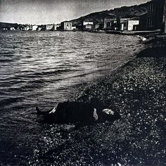 The body of a deceased female. In the background Turkish chettes are entering the town. Folk Dance, In Ancient Times, Ottoman Empire, Black Sea, Persecution, Greece, Europe, Island, History