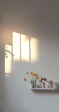 sunlight on the wall Soft Wallpaper, Aesthetic Pastel Wallpaper, Aesthetic Backgrounds, Flower Wallpaper, Aesthetic Wallpapers, Aesthetic Rooms, Aesthetic Art, Aesthetic Pictures, Wallpaper Bonitos
