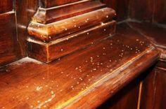 Deterioramento dei mobili in legno: cause. - Questioni di Arredamento