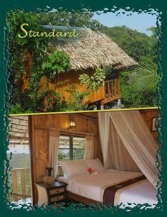 Seaview Resort, southeast side of Koh Tao - Standard Room ($24/night) Fan Hot Shower Seaview Double bed for 2 person occupancy Balcony Hammock