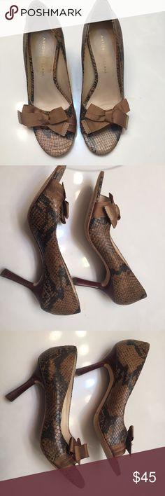 Antonio Melani Brown Snakeskin  Heels Size 6.5M Antonio Melani Brown Snakeskin Leather Heels with 3.5inch heel Size 6.5M in good condition ANTONIO MELANI Shoes Heels