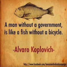 A man without a government is like a fish without a bicycle   Anonymous ART of Revolution