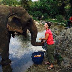 Volunteer with elephants; don't ride them. Learn about the consequences of elephant tourism and real benefits of volunteering with elephants in Thailand. Elephant Walk, Elephant Love, Burma, Thailand Elephants, Bali Holidays, Elephant Sanctuary, Responsible Travel, Sustainable Tourism, Bali Travel