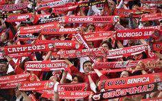 adeptos_benfica Benfica Wallpaper, Sports Clubs, Portugal, Football Fans, Ronaldo, Good Things, Design Art, Asia, Photography