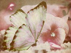 Arte Poetica: Intesa d'amore