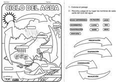 Estados del agua para colorear para niños - Imagui Earth Science, Science And Nature, Weather Unit, 5th Grade Science, Water Cycle, Dual Language, Interactive Notebooks, Life Cycles, Teaching English