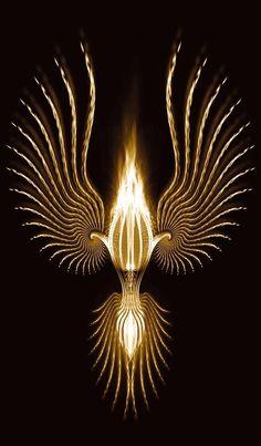 Black and Gold Purple Gold, Black Gold, Black And White, Or Noir, Golden Design, Golden Goddess, Gold Aesthetic, Shades Of Gold, Color Dorado