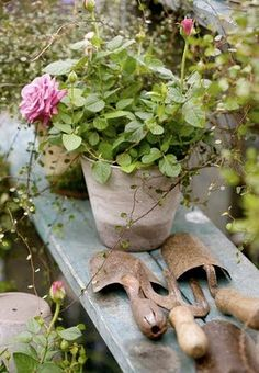 I like using an old plank board for garden bench for sitting pots. Can simply support it with cinder blocks. I like using an old plank board for garden bench for sitting pots. Can simply support it with cinder blocks. Old Garden Tools, Garden Art, Garden Design, Gardening Tools, Rusty Garden, Garden Crafts, Organic Gardening, Landscape Design, Beautiful Gardens