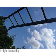 Eclphotography