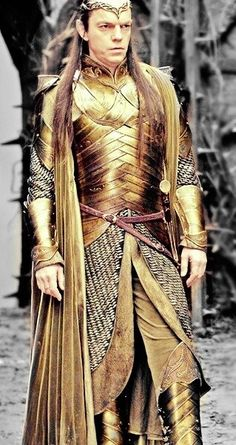 "Elrond - ""Thranduil, you are not the only one who looks fabulous in armor.  Come stand beside me, old friend, and we will set those fangirl hearts aflame."""