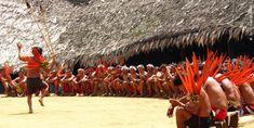 indigenas brasil - Hledat Googlem
