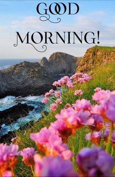 Happy Thursday Morning, Happy Good Morning Quotes, Good Morning Flowers, Good Morning Messages, Good Morning Greetings, Good Morning Good Night, Good Morning Wishes, Good Morning Images, Good Night Beautiful