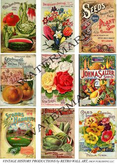 Vintage Seed Packs 5 Digital Seed Catalog by RarePaperDetective