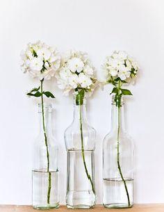 Flowers // White