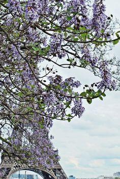 Springtime in Paris...
