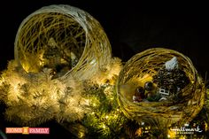 Christmas Globe Centerpieces by @tmemme28! Tune in to Home and Family weekdays at 10/9c on Hallmark Channel!