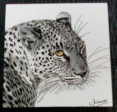LEOPARD - Black & White Block Mounted PHOTO ART Images by GoodiezOnline on Etsy