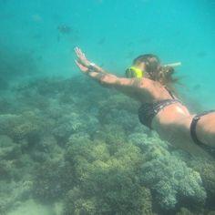 Snorkeling in #greatbarrierreef #gbr #qld #airliebeach #beautiful #underwater #happy by nadine_jx http://ift.tt/1UokkV2