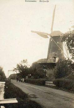 Bleiswijk, korenmolen