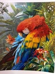 - Art by Stephen Jesic - Nature Art & Wildlife Art - Wildlife in their natural habitat - Jesic Art Tropical Birds, Exotic Birds, Colorful Birds, Paintings Famous, Animal Paintings, Deco Jungle, Parrot Painting, All Birds, Wildlife Art