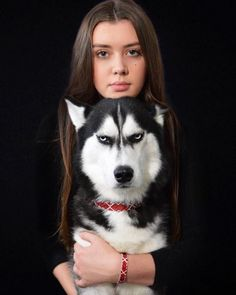 Humans Attempt To Do A Christmas Card Photoshoot With Their Husky, And The Result Is Just Too Funny Animals And Pets, Funny Animals, Cute Animals, Pet Dogs, Dog Cat, Doggies, Grumpy Dog, Husky Puppy, Cat Memes