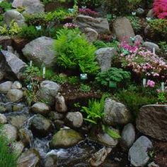 211 Best Rock Gardens Images Garden Path Beautiful Gardens