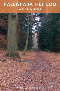 Paleispark het Loo - km wandeling - Happy hikers Outdoor Activities, Netherlands, Hiking, Country Roads, World, Whisky, Places, Amsterdam, Dutch