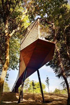 Designline Wohnen - Projekte: Schwebend im Wald | designlines.de