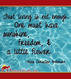One must have sunshine, freedom & a little flower~ quote from Hans Christian Anderson