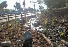 Baldwin Hills Eastern Gateway- North East Trees removed a concrete drainage ditch and replaced it with this bioswale.