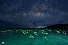 Stargazing at Biri Island, Samar Philippines