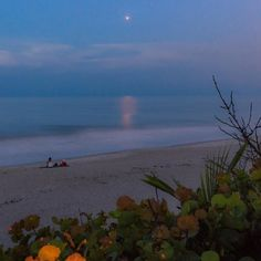 photo scenery kabhi-kabhi:Mars over the Atlanticphoto by John Kraus Nature Aesthetic, Blue Aesthetic, Aesthetic Photo, Aesthetic Pictures, Ernst Hemingway, Foto Casual, Belle Photo, Pretty Pictures, Summer Vibes