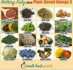 Plant based / vegan omega 3s