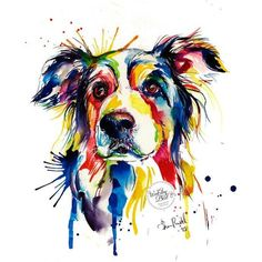 Colorful Border Collie Art Print Print of Original Watercolor Painting ❤ liked on Polyvore featuring home, home decor, wall art, watercolor painting, colorful paintings, water colour painting, water color painting and watercolor wall art