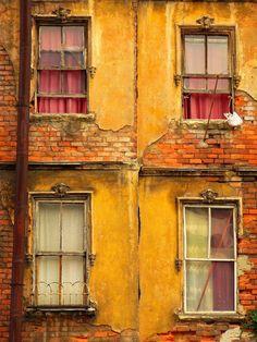 Urban Decay Windows in Istanbul - Robin Robokow Old Windows, Windows And Doors, Exterior Windows, Dark Autumn, Window View, Window Art, Window Boxes, Rear Window, Photos Voyages
