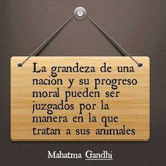 Gandhi lo dijo muy claro