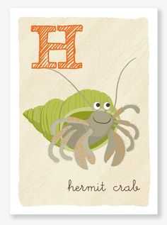 """H is for hermit crab. H is also for """"high maintenance"""""""