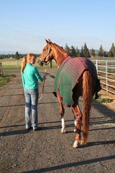 Find out why using coolers on horses post-exercise makes good sense. #horses #horsehealth #cooldown #TheHorse