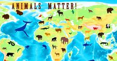Protecting Earth's Animals: Make the Animal Welfare Movement a Global Force   The Animal Rescue Site Blog