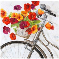 Ballard Designs Fleur de la Mart Giclee ($199) ❤ liked on Polyvore featuring home, home decor, wall art, art, backgrounds, bicycle, flower stem, blossom wall art, bike wall art and french wall art