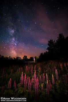 A New Hampshire night