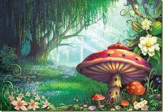 bosque encantado
