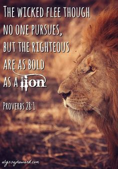 God didn't give us a spirit of fear. The Holy Spirit, who lives in us, makes us bold. We are bold as we share our faith and as we live out loud for Christ. Scripture Verses, Bible Verses Quotes, Bible Scriptures, Spirit Of Fear, Holy Spirit, Lion Of Judah Jesus, King Jesus, Proverbs 28, Biblical Quotes