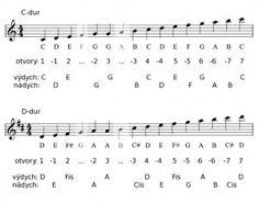 Výsledok vyhľadávania obrázkov pre dopyt fúkacia harmonika v ľudovej hudbe noty