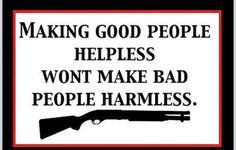 Support the Amendment! Another Pinner said: Do anti-gun politicians really think making us helpless will reduce crime? Are they really that dumb? or do they think WE are? Pro Gun, Thats The Way, That Way, We The People, Good People, Thing 1, Gun Rights, Gun Control, 2nd Amendment
