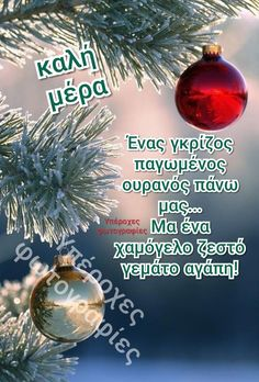 Christmas Bulbs, Merry Christmas, Good Morning Good Night, Holiday Decor, Noel, Christmas, Merry Little Christmas, Christmas Light Bulbs, Wish You Merry Christmas